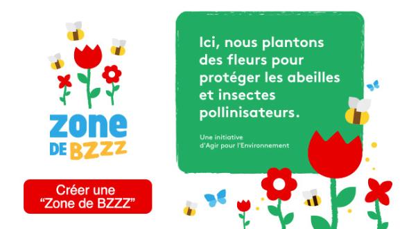 Zone de BZZZ - Semons des graines pour aider les insectes pollinisateurs !